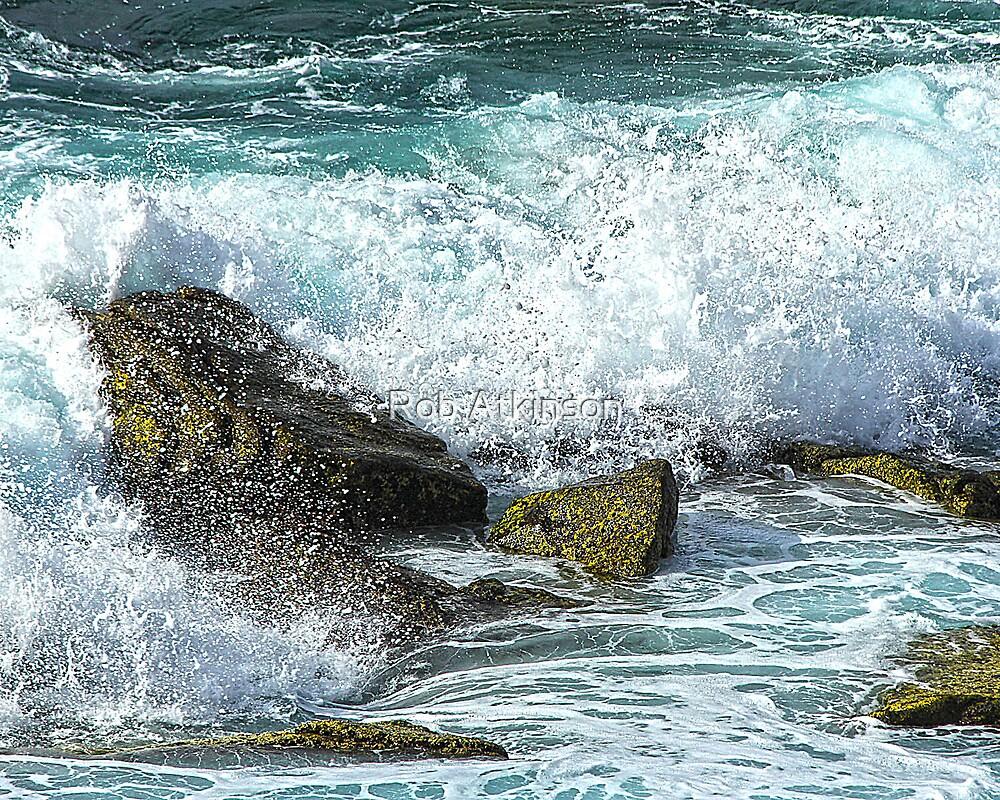 Rock Moss Splash by Rob Atkinson