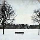The empty bench by Anne Staub