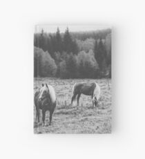 Blondes Hardcover Journal
