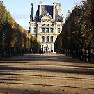 Autumn in the Louvre gardens, Paris by graceloves