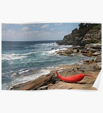 Sculpture by the sea ... bondi ... Sydney 2012. Poster