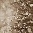 Fairy Drops Sepia iPhone / iPod by Astrid Ewing Photography