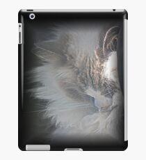 """""""Kitty Kitty IPad Case """" iPad Case/Skin"""