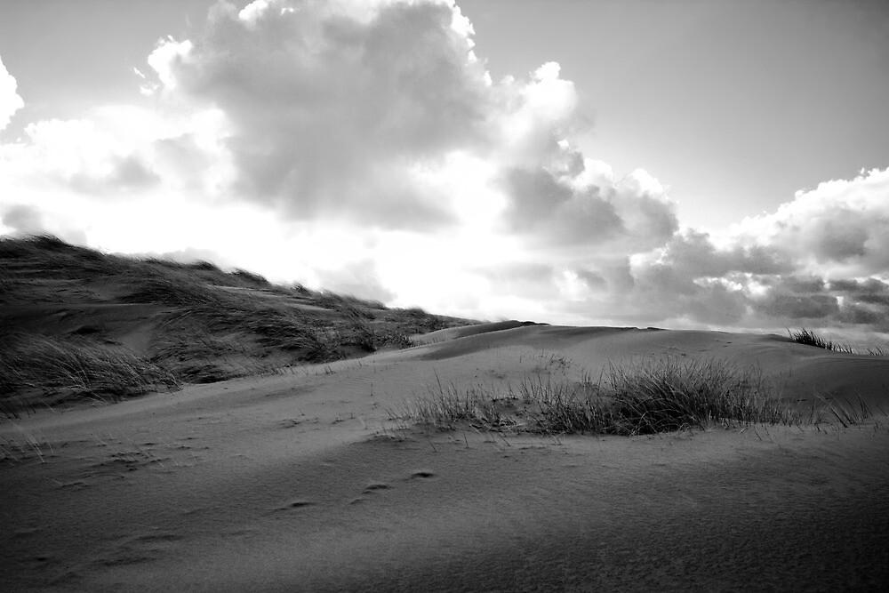 Dunes of Den Haag by Chopen