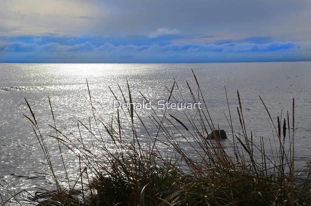 Balintore Sea View by Donald  Stewart