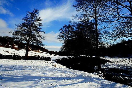 Snow bridge 2 by laurenrebecca8