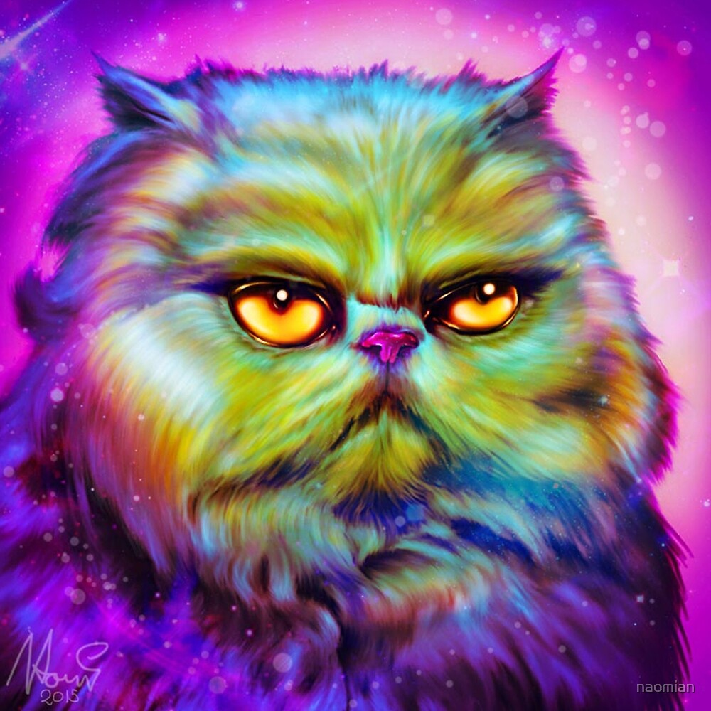 LouLou, persian cat by naomian