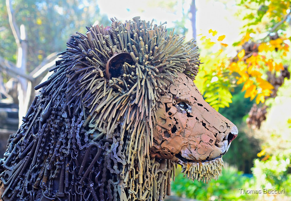 Lion made of screws, nails, chains and metal parts by TJ Baccari Photography