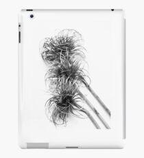 Nature abstract ipad case iPad Case/Skin