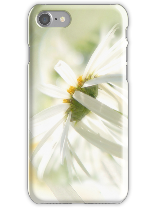 Daisy a day (iPhone) by John Poon