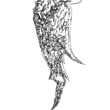 Bird of Prey (Pájaro de Presa) by pozeto