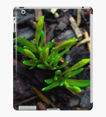 Green - new life iPad Case/Skin