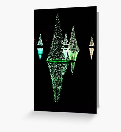 Holidays Reflections Greeting Card