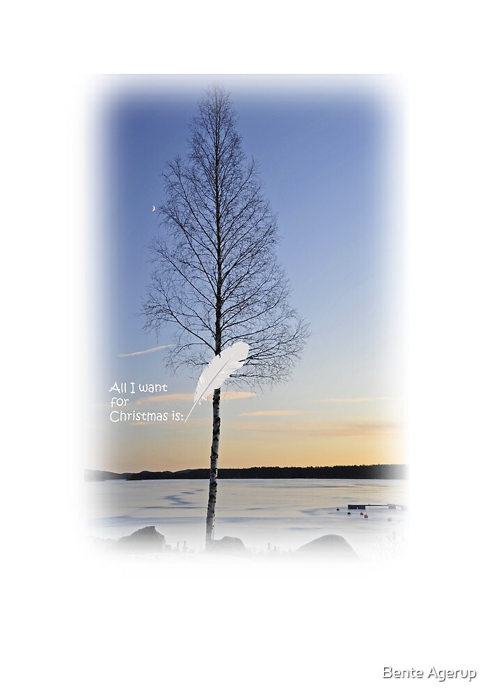 Christmas card III by Bente Agerup