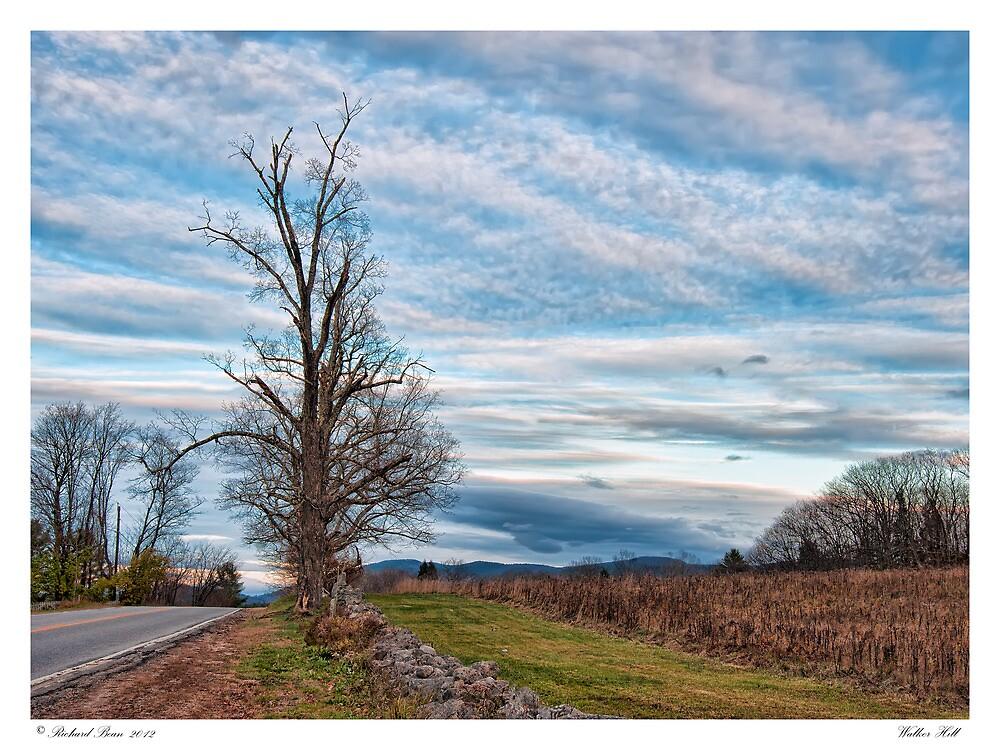 Walker Hill by Richard Bean