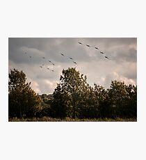 RAF Balbo Photographic Print