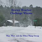 Challenge Winner - Stormy Weather by quiltmaker