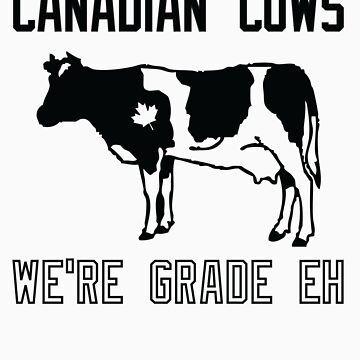 Canadian Cows by paypa