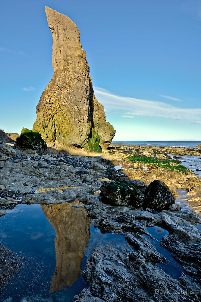 Sea Stack Reflection by David Lewins