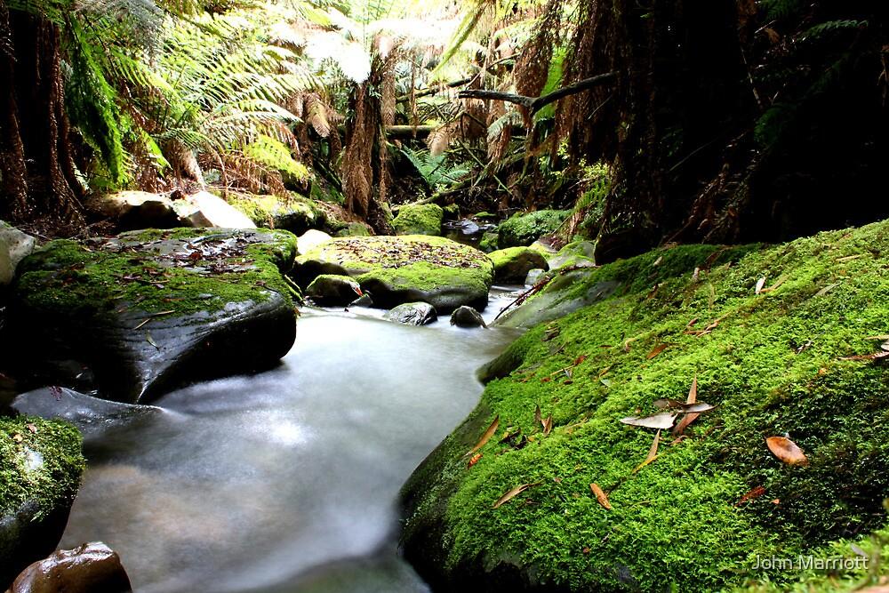 Gentle Stream by John Marriott