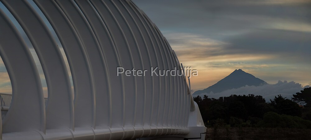 The Connection by Peter Kurdulija