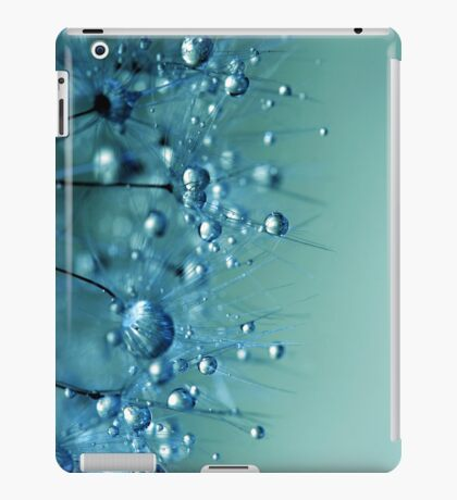 Blue Shower iPad Case/Skin
