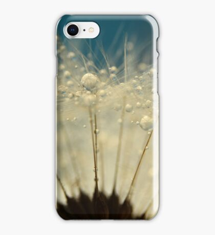 Dandelion with Blue iPhone Case/Skin