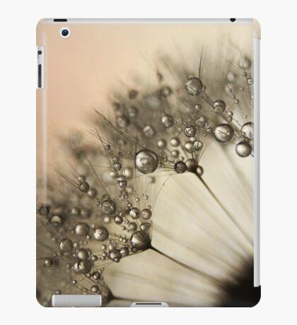Peach & Dandy iPad Case/Skin