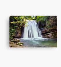 Janet's Foss - The Yorkshire Dales Canvas Print