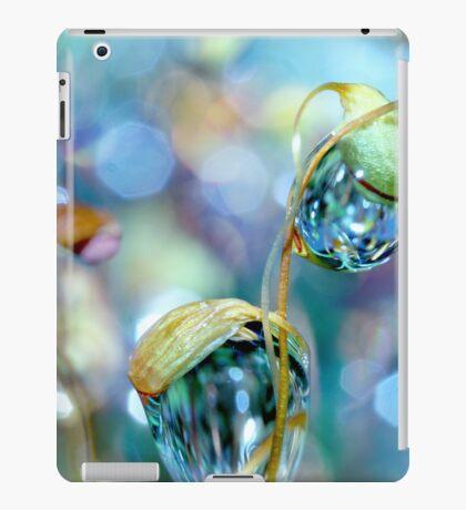 Rainbow Moss Drops iPad Case/Skin