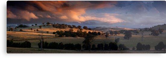 Sunset by Bernadette Maurer