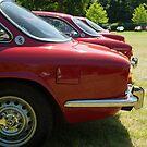 Alfa Romeo Giulia Sprints by Flo Smith