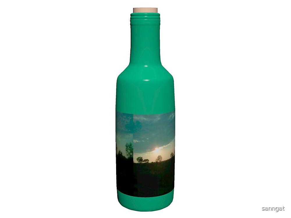wine bottle by sanngat