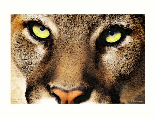 Cougar Eyes by Sharon Cummings