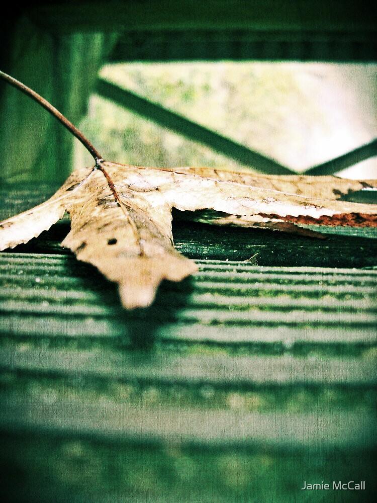 leaf  by Jamie McCall