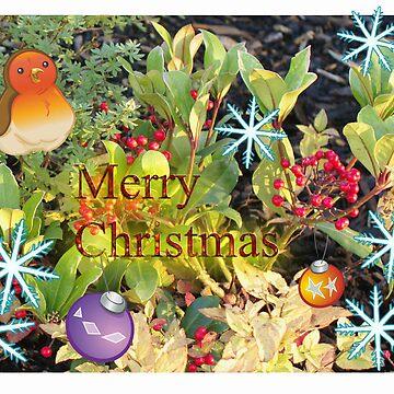 Christmas berries card by crware
