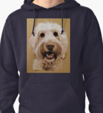 Bernie the gorgeous labradoodle! Pullover Hoodie