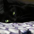 Emerald Eyes by Samantha Dean
