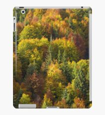 Fall Colors iPad Case/Skin