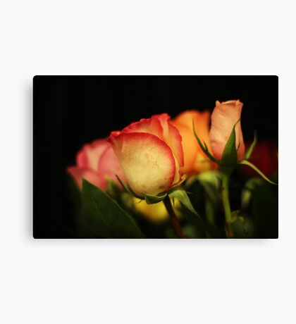 Flowers on a black background Canvas Print