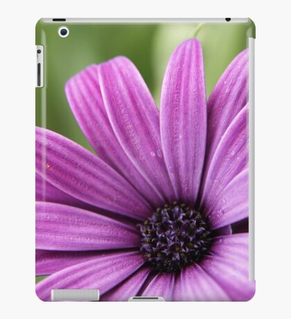 Purple iPad Case/Skin