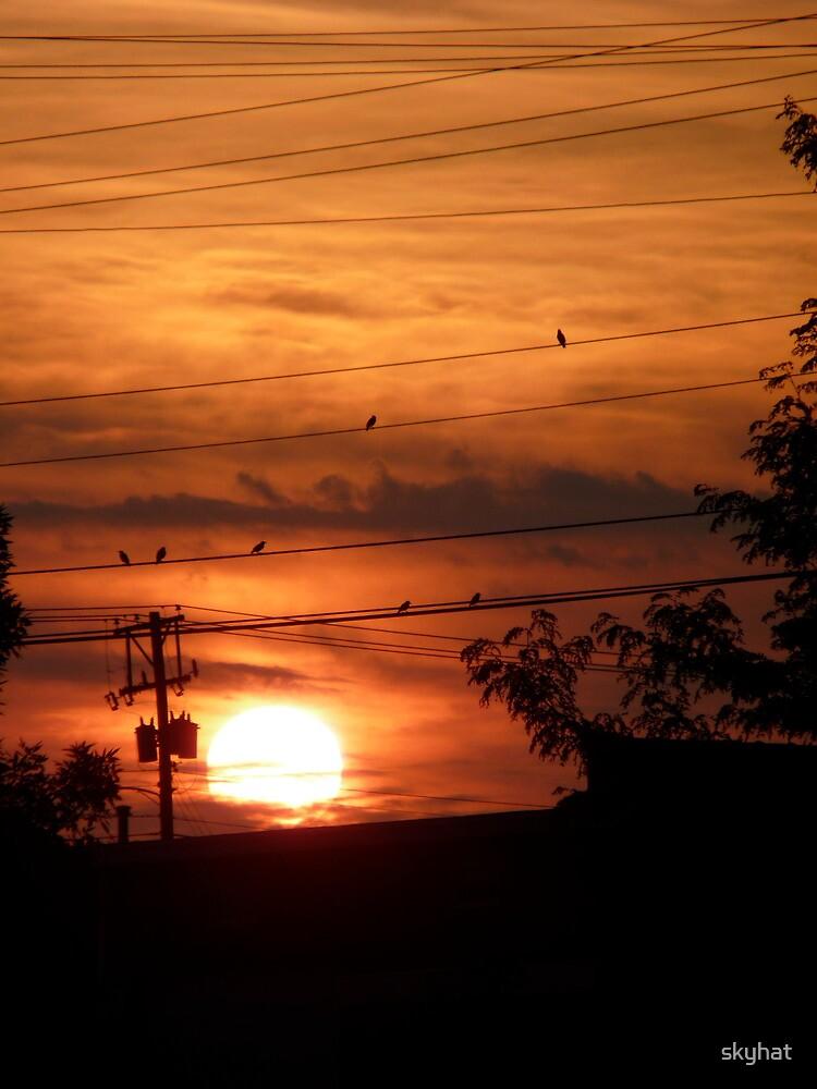 Sunrise Radiance by skyhat