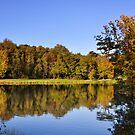 Autumn Colours pt4 by Lisa Williams