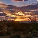 Sunrise Done Arizona Style  by Saija  Lehtonen