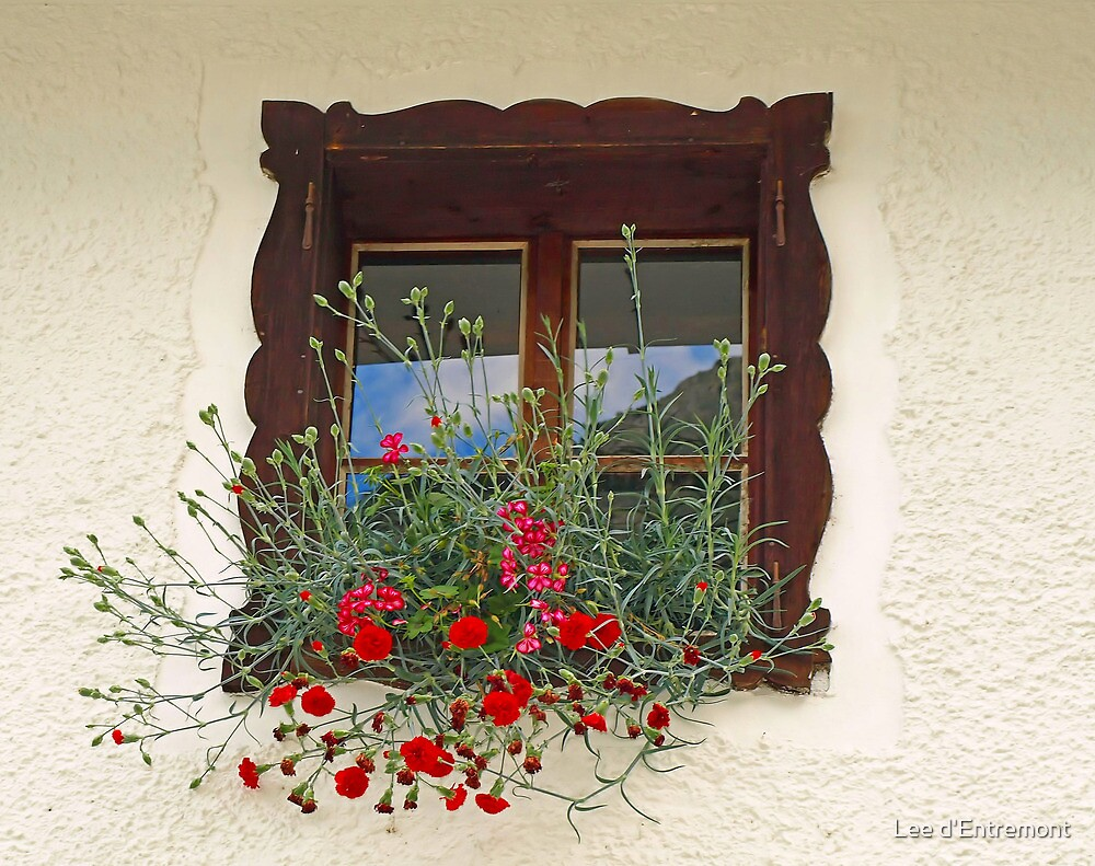 Window & Flowers. by Lee d'Entremont