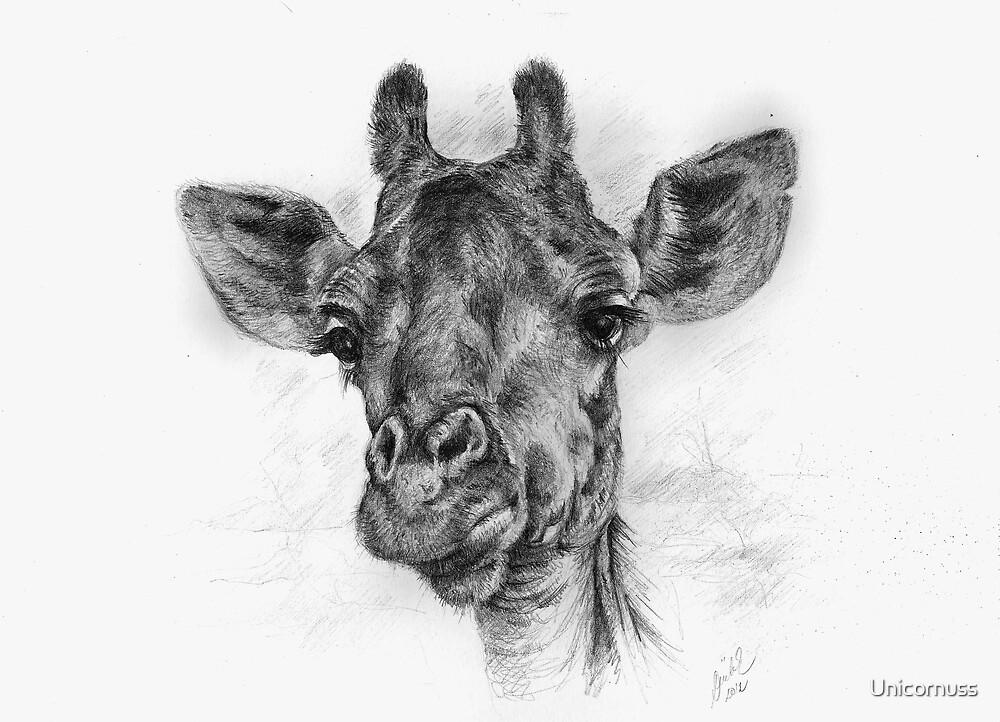 Giraffe by Unicornuss