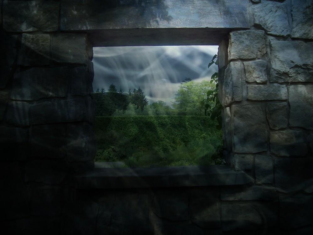 The Window by SueMydliak