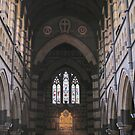St Paul's Cathedral, inside by Stephen  Shelley
