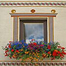 Flowerful Window. by Lee d'Entremont