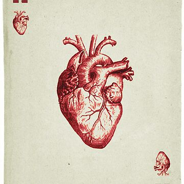 Ace of Hearts by llamateeth